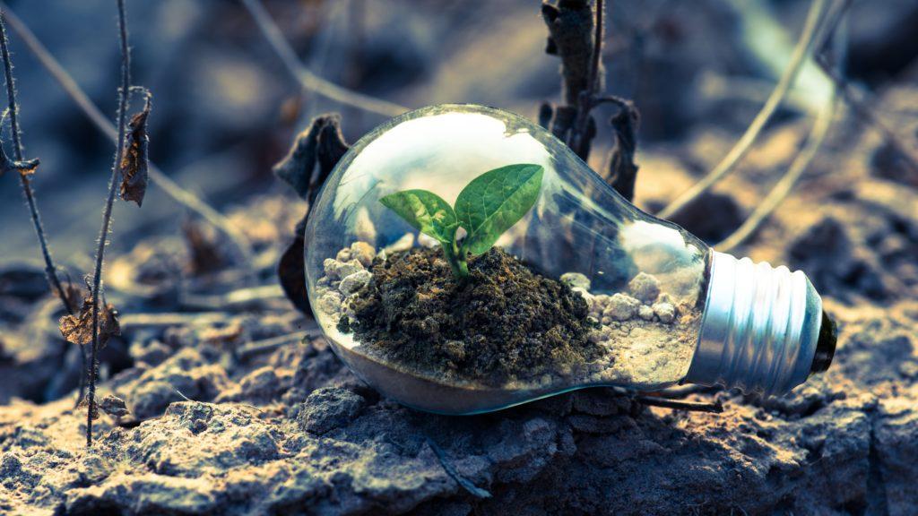5 põhjust, miks rohetehnoloogiasse investeerida juba täna